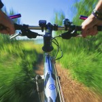 Cyclists Call for Insurance vs. Negligent Drivers