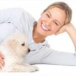 Car Insurers Eyeing Pet Coverage